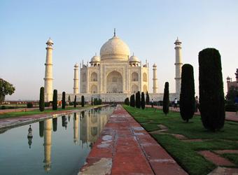 IP INDIA AGR Taj rflct Asymtrc
